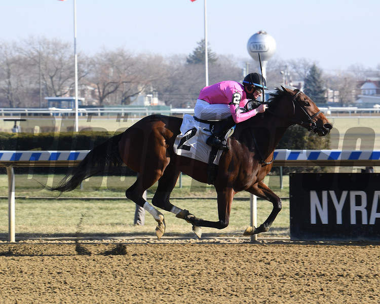 Love of My Heart - Maiden Win, Aqueduct, December 22, 2019<br /> Coglianese Photos
