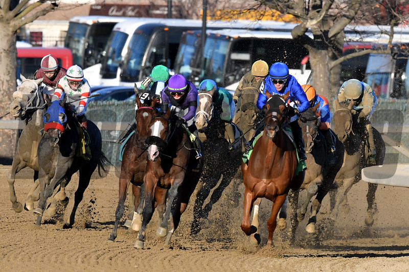 Lake Avenue wins the 2019 Demoiselle Stakes at Aqueduct<br /> Coglianese Photos/Janet Garaguso