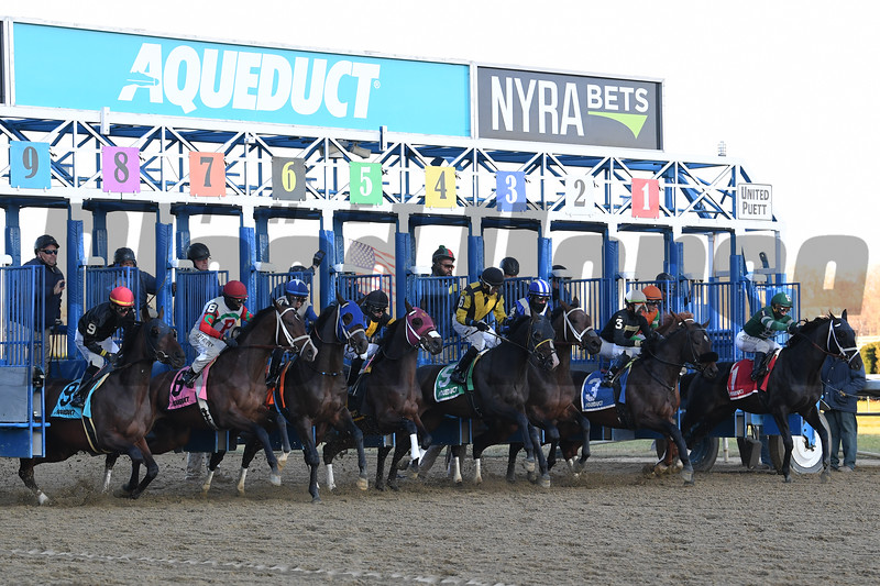 Shotski wins the 2019 Remsen Stakes at Aqueduct<br /> Coglianese Photos/Susie Raisher
