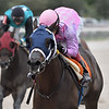 Yodel E. A. Who wins an allowance optional claiming race Sunday, November 17, 2019 at Gulfstream Park West. Photo: Coglianese Photos/Ryan Thompson