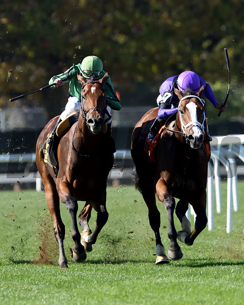 Gucci Factor wins the 2019 Mohawk Stakes at Belmont Park<br /> Coglianese Photos/Elsa Lorieul