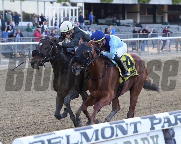 Captain Bombastic wins the 2019 Sleepy Hollow Stakes<br /> Coglianese Photos/Joe Labozzetta