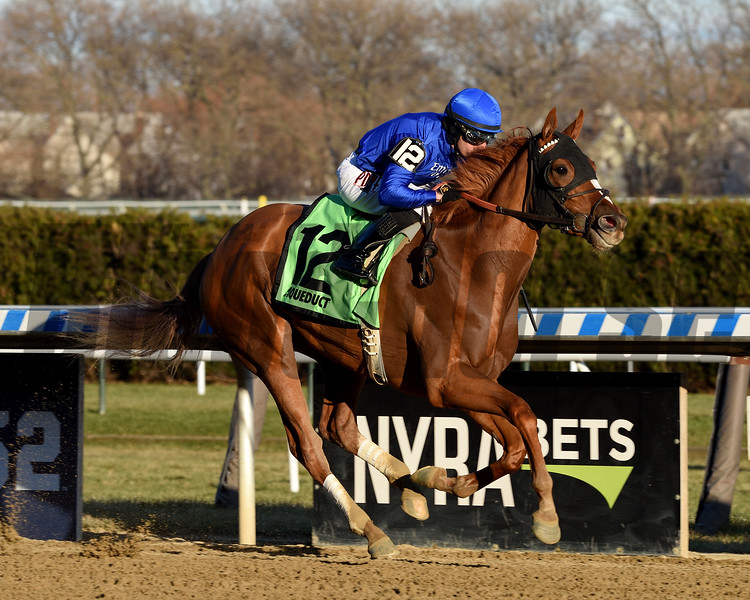 Lake Avenue wins the 2019 Demoiselle Stakes at Aqueduct<br /> Coglianese Photos