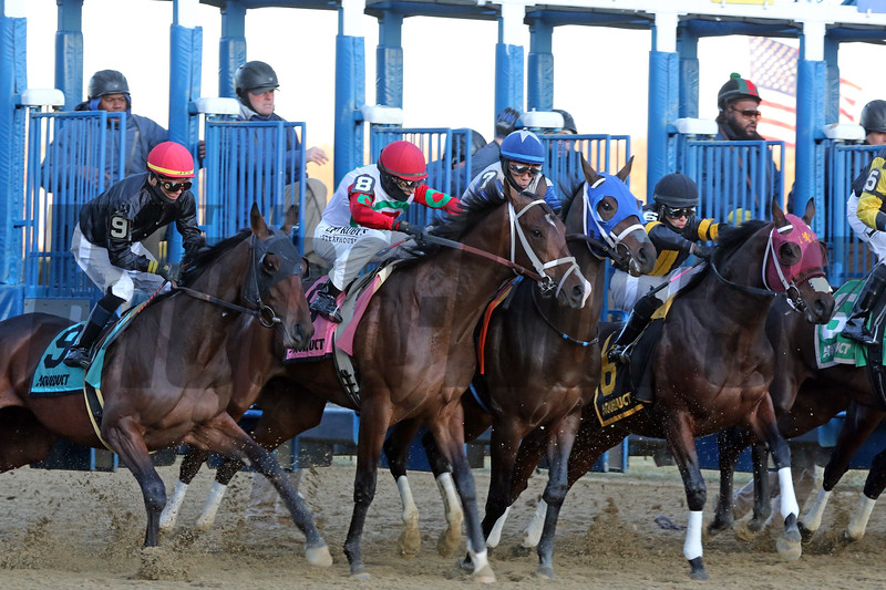 The start of the 106th Running of the Remsen (GII) at Aqueduct on December 7, 2019. Photo By: Chad B. Harmon