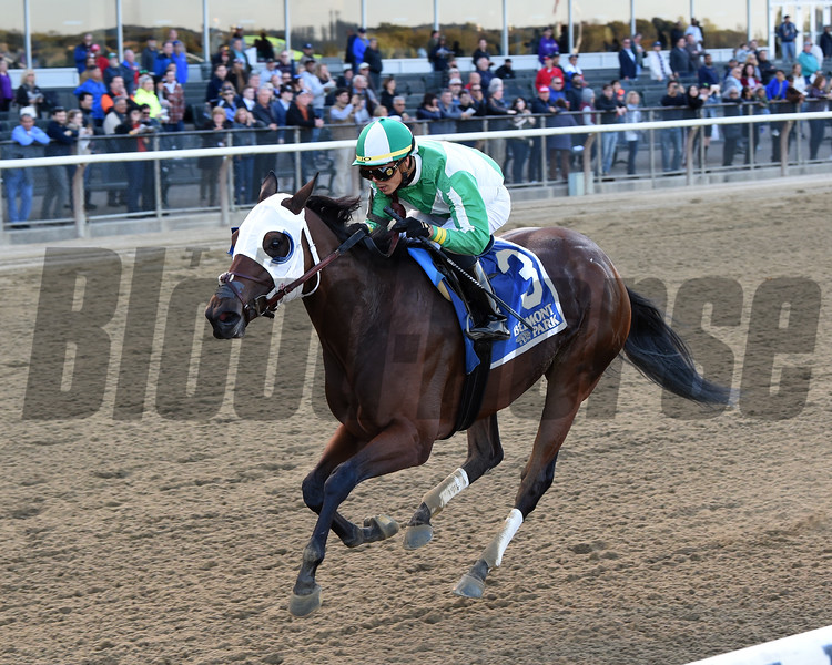 Pauseforthecause wins the 2019 Iroquois Stakes at Belmont Park<br /> Coglianese Photos/Chelsea Durand