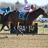 Cost Basis - Maiden Win, Aqueduct, December 7, 2019<br /> Coglianese Photos