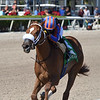 Tonalist's Shape wins the 2019 Hut Hut Stakes at Gulfstream Park<br /> First sw for Tonalist<br /> Coglianese Photos/Derbe Glass