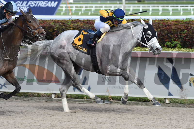 Jean Elizabeth wins the 2019 Abundantia Stakes at Gulfstream Park. Photo: Coglianese Photos/Cris Morales