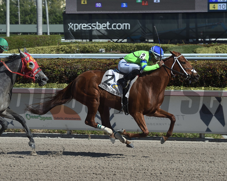 Liza Star wins the 2019 Claiming Crown Glass Slipper at Gulfstream Park<br /> Coglianese Photos/Lauren King