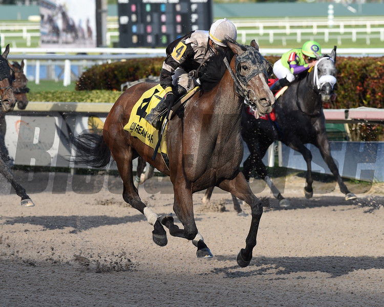 Pink Sands wins the 2019 Rampart Stakes at Gulfstream Park  <br /> Coglianese Photos