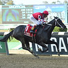 Midnight Bisou wins the 2019 Beldame Stakes at Belmont Park<br /> Coglianese Photos/Janet Garguso