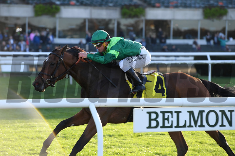 Fifty Five wins the 2019 Ticonderoga Stakes at Belmont Park<br /> Coglianese Photos/Joe Labozzetta