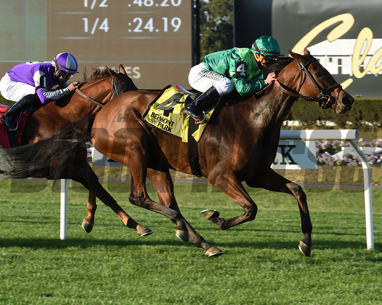Fifty Five wins the 2019 Ticonderoga Stakes at Belmont Park<br /> Coglianese Photos/Janet Garaguso