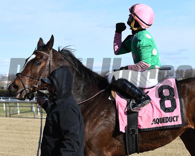 Saratoga Treasure wins the 2019 Autumn Days Stakes at Aqueduct<br /> Coglianese Photos/Joe Labozzetta