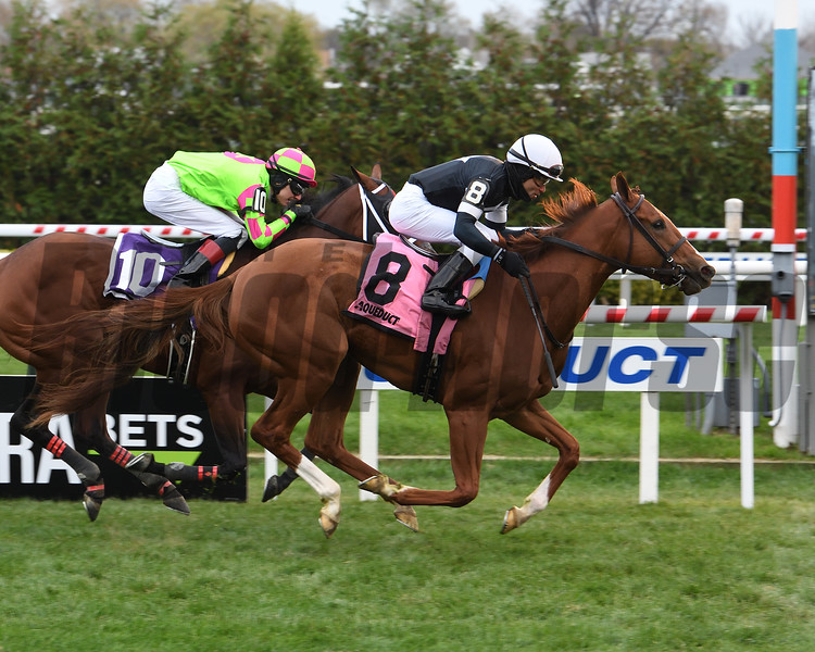 Fly So Pretty wins the 2019 Stewart Manor Stakes at Aqueduct. Photo: Coglianese Photos/Susie Raisher