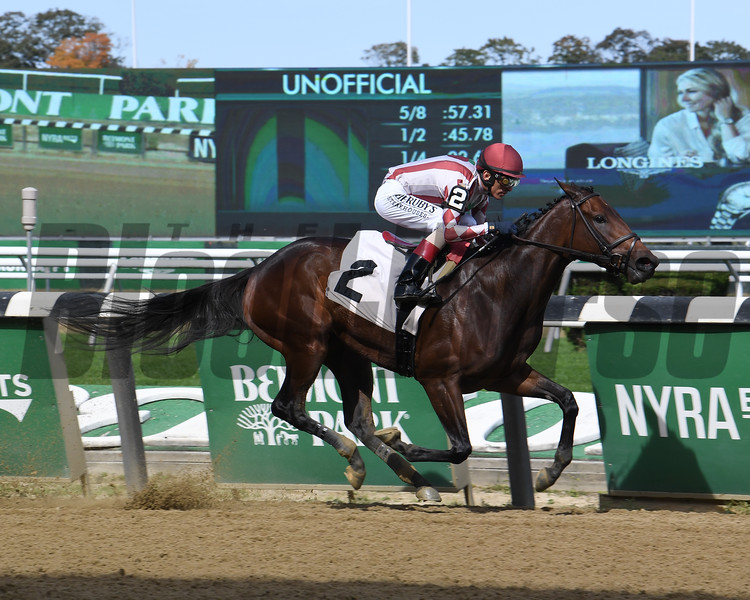 Bridlewood Cat - Maiden Win, Belmont Park, October 13, 2019<br /> Coglianese Photos
