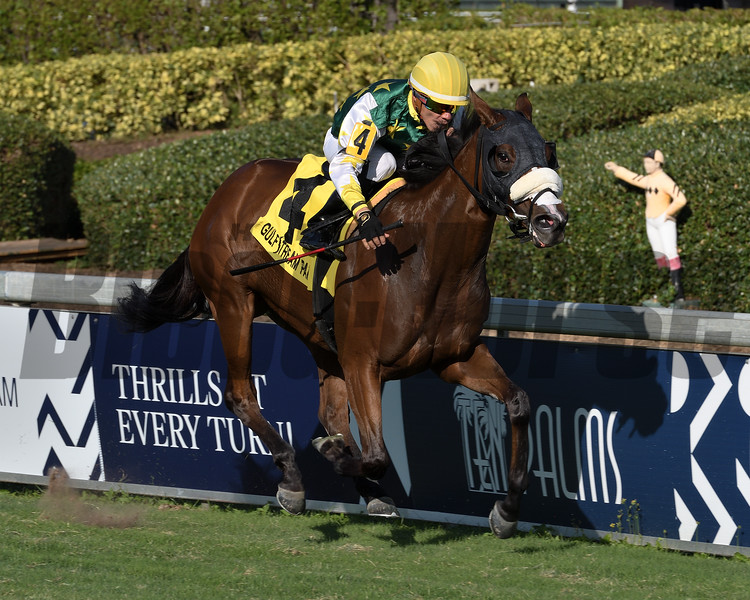 Cheermeister wins the 2019 Wait a While Stakes at Gulfstream Park<br /> Coglianese Photos/Ryan Thompson