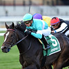 Empressof the Nile wins the 2019 Zagora Stakes at Aqueduct<br /> Coglianese Photos/Chelsea Durand
