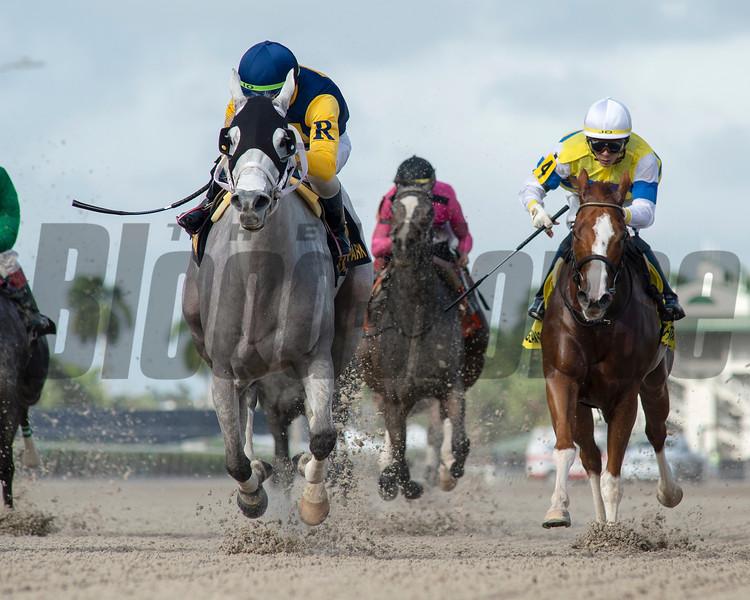 Jean Elizabeth wins 2019 Abundantia Stakes at Gulfstream Park. Photo: Coglianese Photos/Ryan Thompson