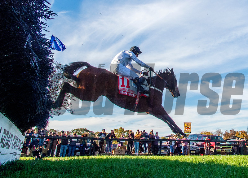 Jockey Nico De Boinvillle rides Brain Power to the win in  the Grand National G1 at Far Hills Race Meeting in Far Hills, N.J. October 19, 2019. Photo by Skip Dickstein/Tim Lanahan.