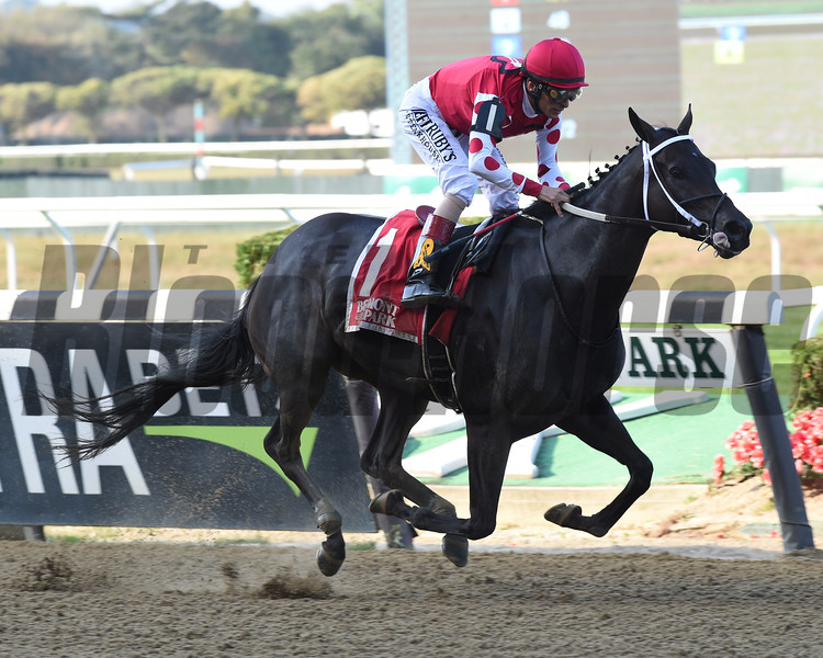 Midnight Bisou wins the 2019 Beldame Stakes at Belmont Park<br /> Coglianese Photos