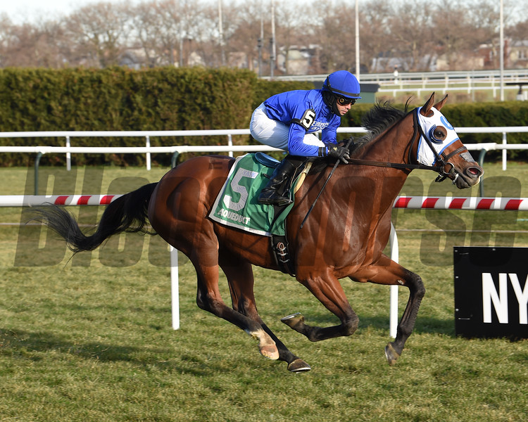 Fully Vested wins the 2019 Aqueduct Turf Sprint Championship<br /> Coglianese Photos