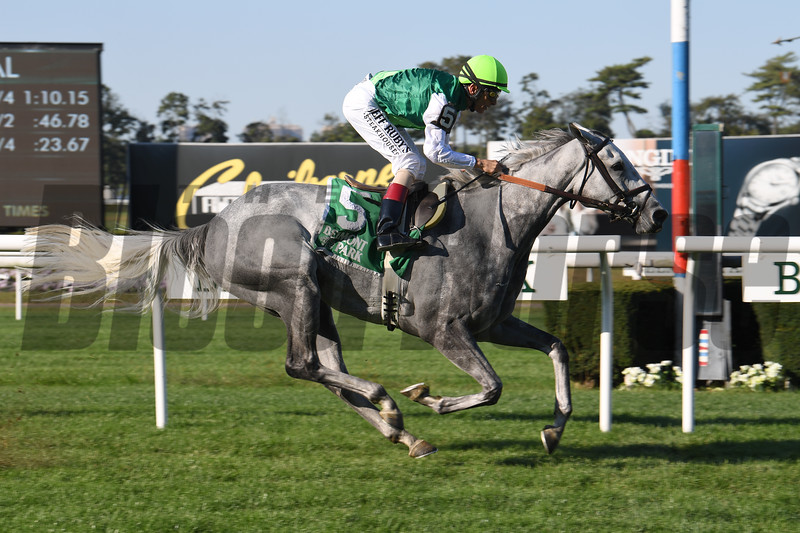 Significant Form wins the 2019 Noble Damsel Stakes at Belmont Park<br /> Coglianese Photos