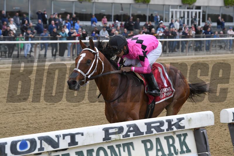 Maximum Security wins the 2019 Bold Ruler Handicap at Belmont Park<br /> Coglianese Photos/Joe Labozzetta