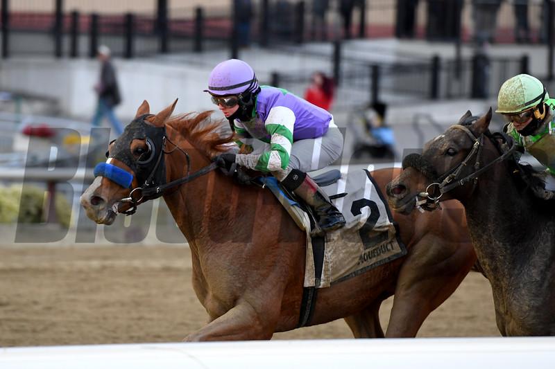 Stan the Man wins 2019 Queen's County Stakes at Aqueduct. Photo: Coglianese Photos/Joe Labozzetta