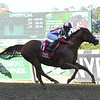 Build to Suit wins the 2019 Hudson Handicap at Belmont Park<br /> Coglianese Photos/Janet Garaguso