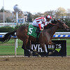 Autonomous - Maiden Win, Aqueduct, November 3, 2019<br /> Coglianese Photos