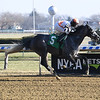 Courageous Girl - Maiden Win, Aqueduct, December 22, 2019<br /> Coglianese Photos
