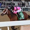 Maximum Security wins the 2019 Cigar Mile at Aqueduct<br /> Coglianese Photos/Joe Labozzetta