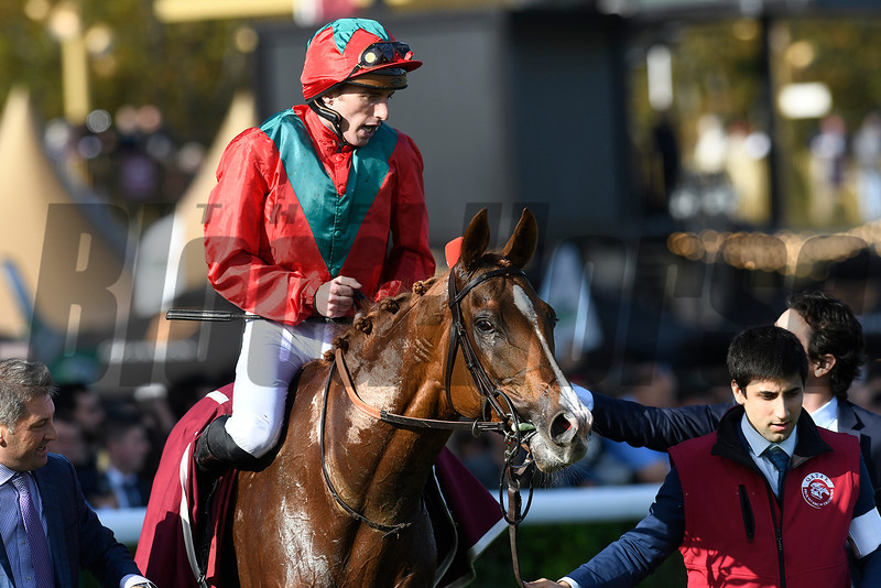 Gestut Ammerland and Newsells Park's Waldgeist came with a late run under Pierre-Charles Boudot to deny Enable a historic third victory in the Oct. 6 Qatar Prix de l'Arc de Triomphe. Photo: Mathea Kelley