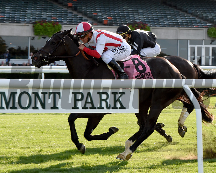 Selflessly wins the 2019 Miss Grillo Stakes at Belmont Park. Photo: Coglianese Photos/Elsa Lorieul