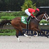 As Seen On Tv wins the 2019 Juvenile Sprint Stakes at Gulfstream Park West<br /> Coglianese Photos