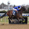 Antoinette wins the 2019 Tepin Stakes at Aqueduct<br /> Coglianese Photos