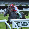 New and Improved wins the 2019 Sands Point Stakes at Belmont Park<br /> Coglianese Photos/Chelsea Durand