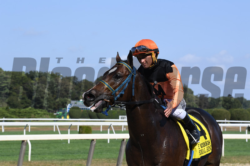 Imperial Hint wins the 2019 Vosburgh at Belmont Park<br /> Coglianese Photos