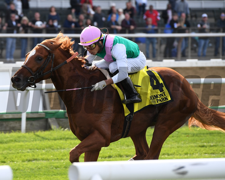 Seismic Wave wins the 2019 English Channel Stakes at Belmont Park<br /> Coglianese Photos/Joe Labozzetta