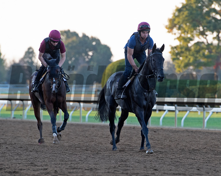 Van Beethoven (right) and Just Wonderful<br /> at Keeneland.