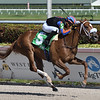 Tonalist's Shape wins the 2019 Hut Hut Stakes at Gulfstream Park<br /> First sw for Tonalist<br /> Coglianese Photos/Ryan Thompson