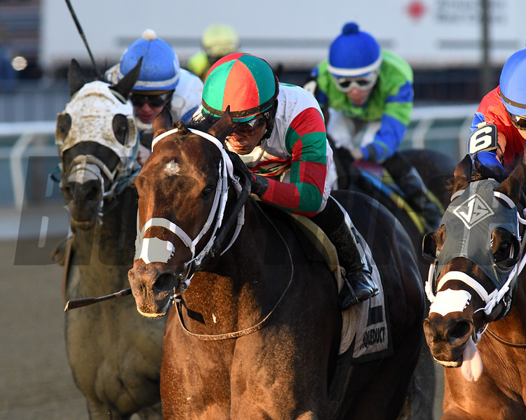 Firenze Fire wins the 2019 Gravesend Stakes at Aqueduct. Photo: Coglianese Photos/Chelsea Durand