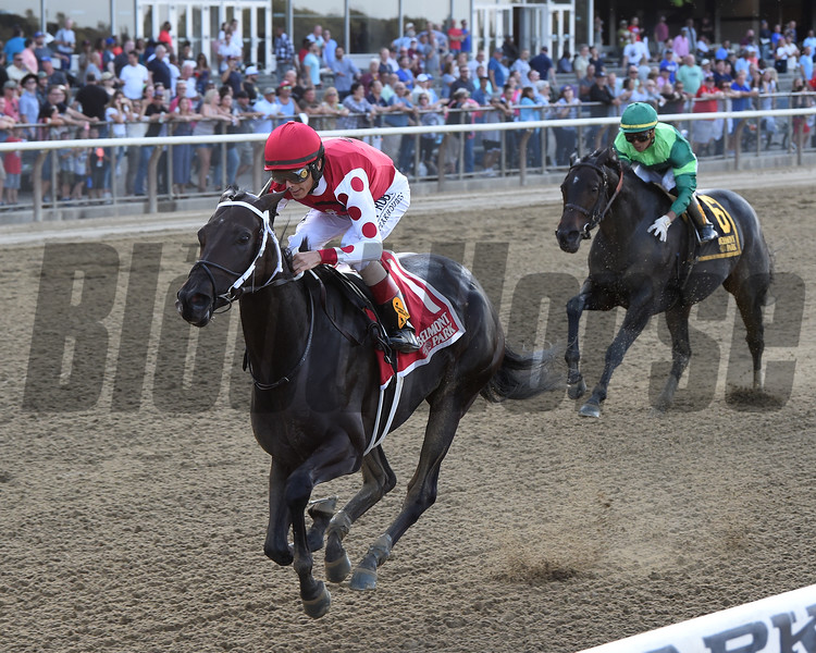 Midnight Bisou wins the 2019 Beldame Stakes at Belmont Park<br /> Coglianese Photos/Chelsea Durand