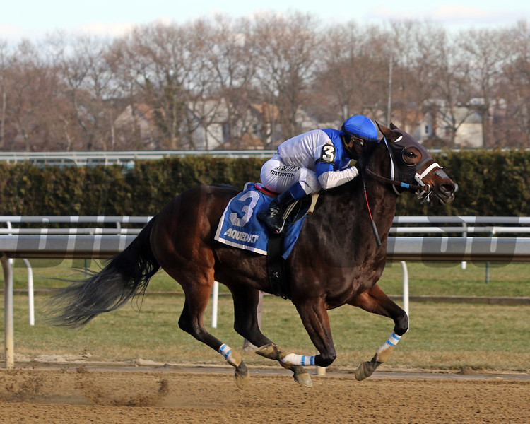 Spiced Perfection (#3) with Javier Castellano win the 80th Running of The Go For Wand (GIII) at Aqueduct on December 7, 2019. Photo By: Chad B. Harmon
