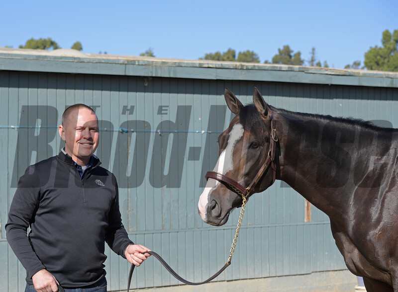 Chad Brown with Bricks and Mortar<br /> at  Oct. 29, 2019 Santa Anita in Arcadia, CA.