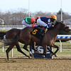 Truth Hurts - Maiden Win, Aqueduct, November 8, 2019<br /> Coglianese Photos