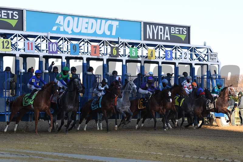 Lake Avenue wins the 2019 Demoiselle Stakes at Aqueduct<br /> Coglianese Photos/Susie Raisher