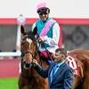 Enable at the Qatar Prix de l'Arc de Triomphe, 10-6-19. Trained by Andre Fabre, Mathea Kelley-Bloodhorse