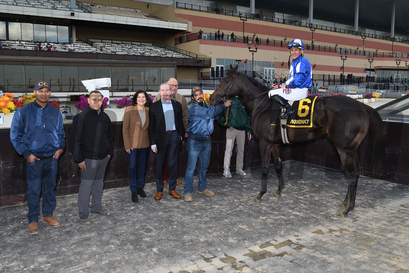 Speaktomeofsummer wins the 2019 Chelsey Flower Stakes at Aqueduct<br /> Coglianese Photos